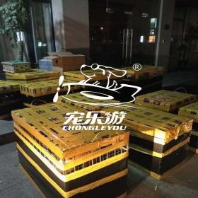 上海宠乐游宠物托运【登机中的宠物】